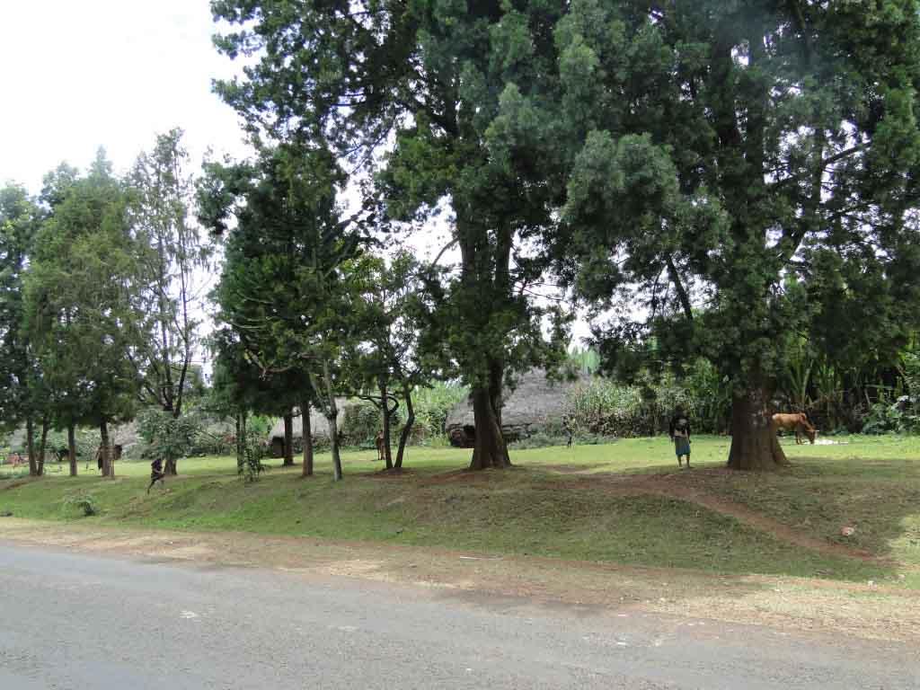 Carretera a Awassa