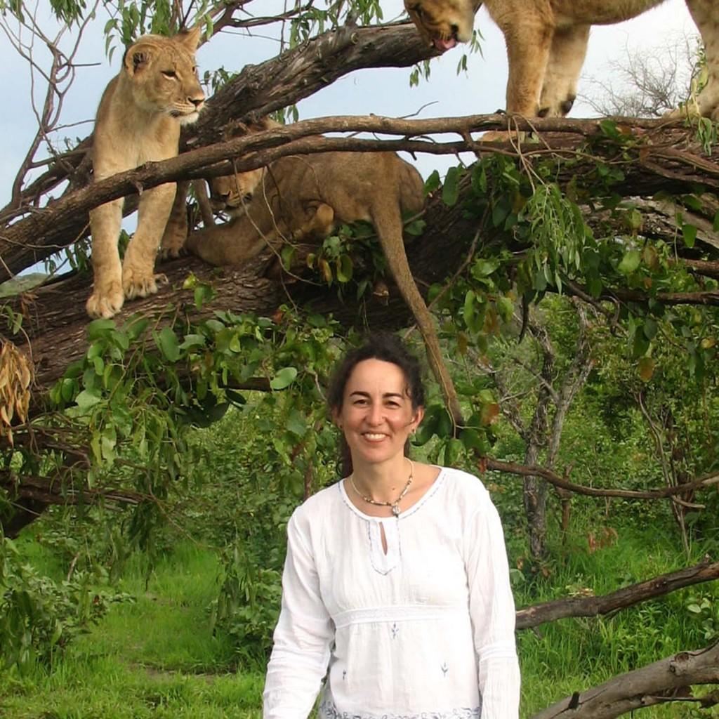 Visita a un centro de recuperación de leones en Zimbabwe, lamentablemente de forma inconsciente, fue irresponsable por mi parte