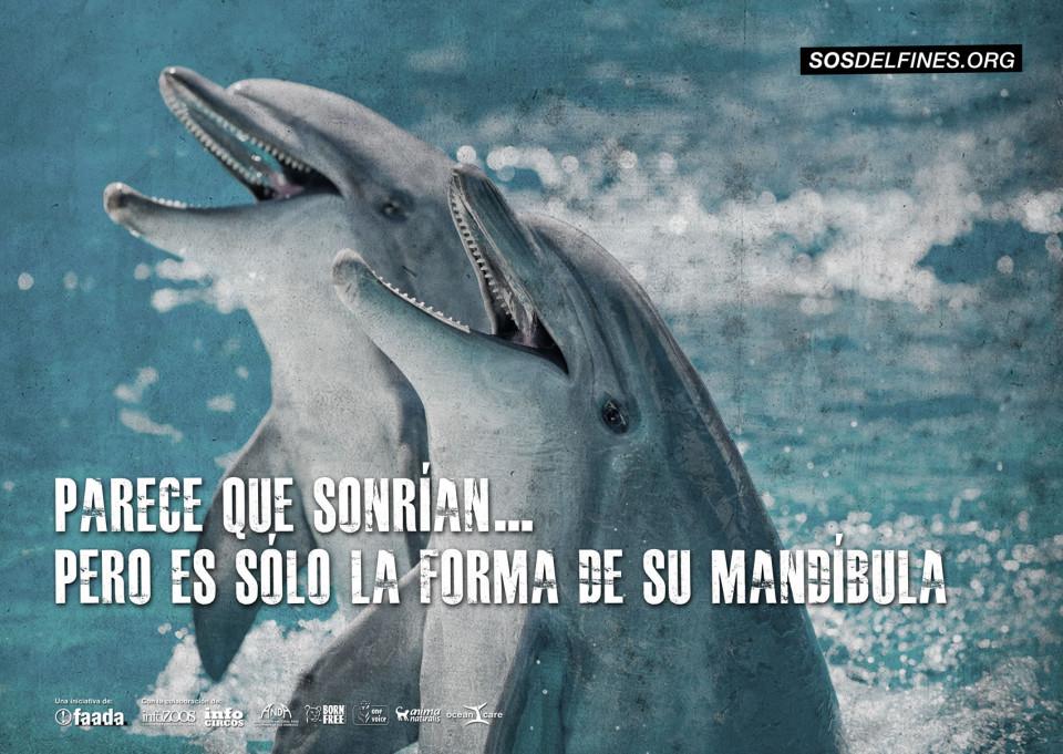 Cartel de SOS delfines