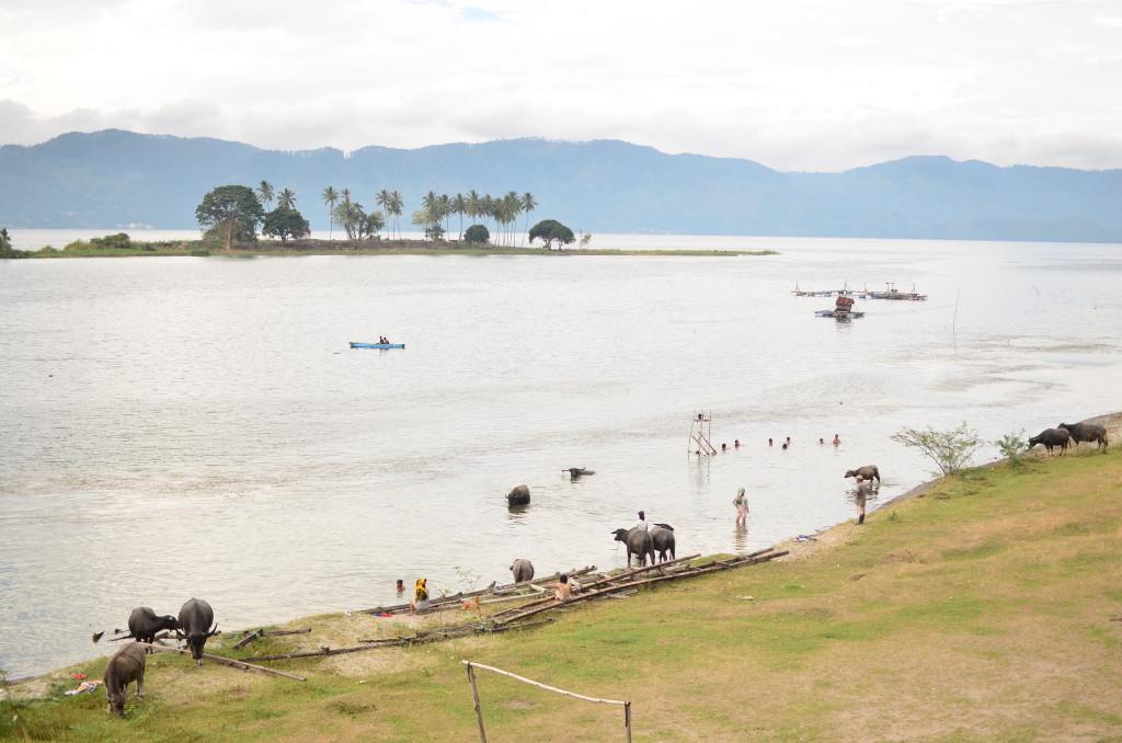 Vistas del ambiente rural del Lago Toba
