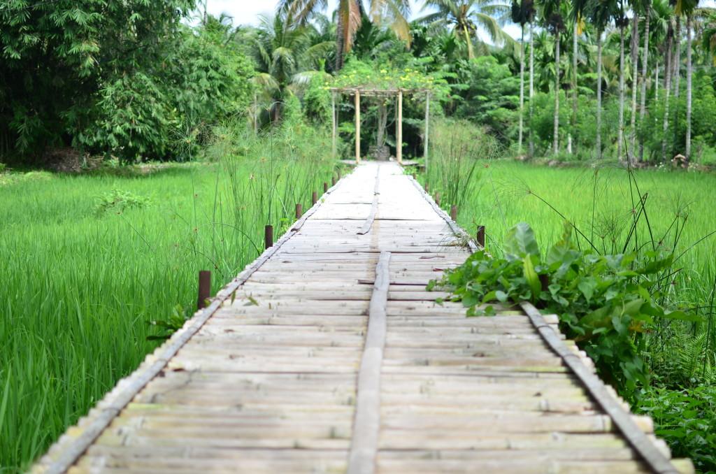 Granja ecológica en Bukit Lawang