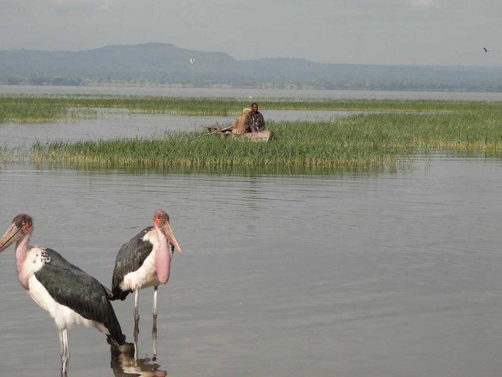 Mercado de los Pescadores en Awassa