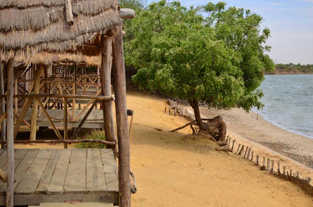 Caballas del Campamento Solidario de Faoye, Senegal