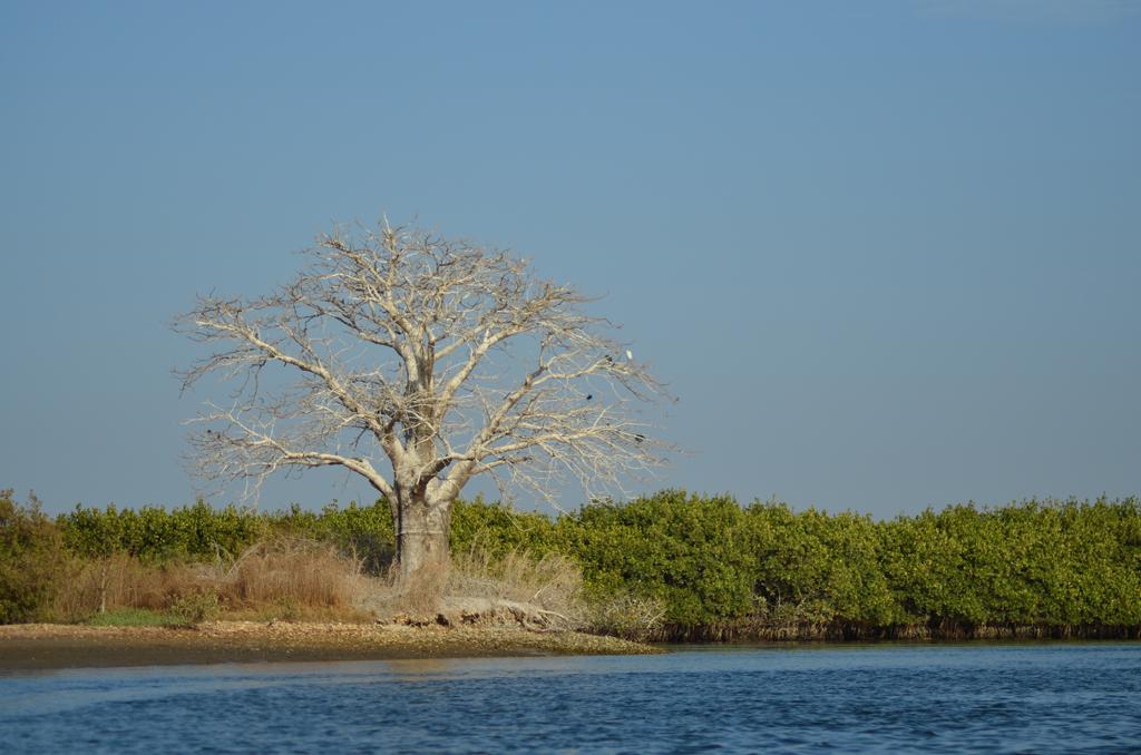 Delta del Saloum, Senegal