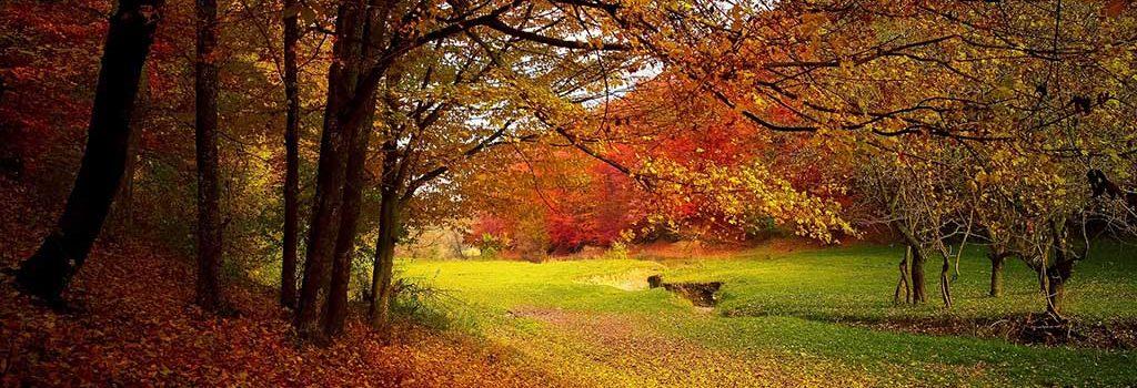 Tres destinos increíbles para vivir el otoño en la montaña
