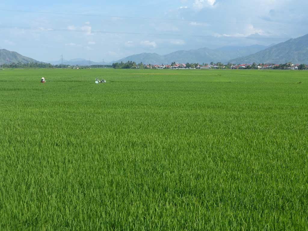 Vietnam en moto