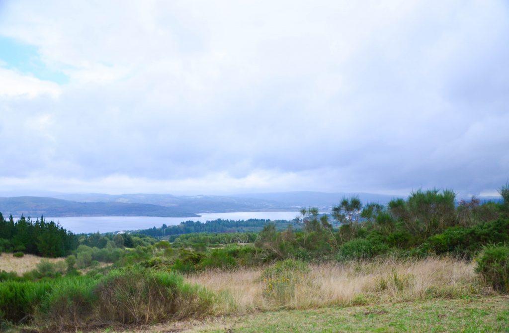 Vistas del lago desde la escombrera, un espacio lleno de vida